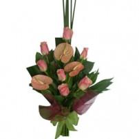 Roses & Anturios, España